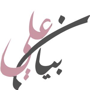 مُدونة بيان علي